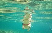 Unterwasser - Hundestrand Sakucani Pula