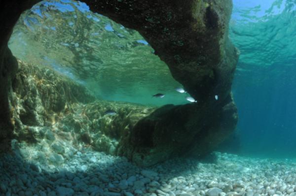 Tauchen im Nationalpark Brijuni