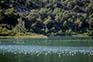 Vögel auf den Bacina Seen