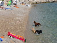 Hundstrand Kroatien