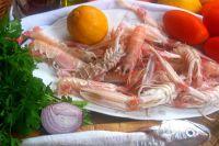 Croatia Harley Days 2014 - Biograd - Gastronomie