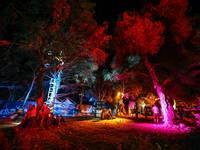 The Garden Outlook Festival Pula
