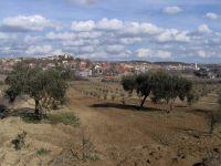 Benkovac