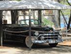 Nationalpark Brijuni - Cadillac
