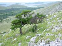 Wandern, Nationalpark Kornati