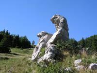 NP Nord-Velebit - Botanischer Garten