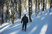 Schnee im Nationalpark Risnjak