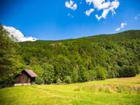 Wiesen im Nationalpark Risnjak, Kroatien