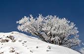 Naturpark Biokovo im Winter