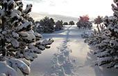 Schnee im Naturpark Biokovo