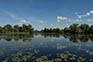 Seenlandschaft Naturpark Kopacki rit
