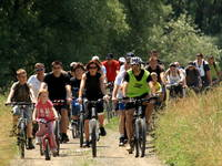 Fahrradfahren, Kopacki rit, Kroatien