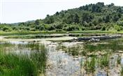 Der Naturpark Lastovo