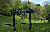 Bergwiese Livada Hunjka