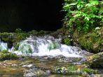Naturpark Papuk - Bach