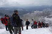Wandergruppe, Winter