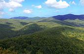 Wälder, Hügel - Papuk