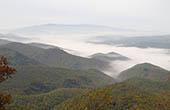 Nebel, Tal, Wald
