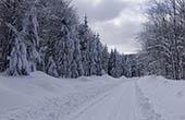 Wege, Winter