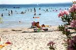 Der schöne Strand Buzakovina