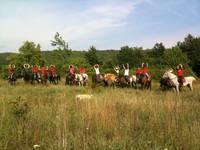 Buzet - Reiten Dolina Konja