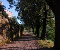 Buzet - Wandern