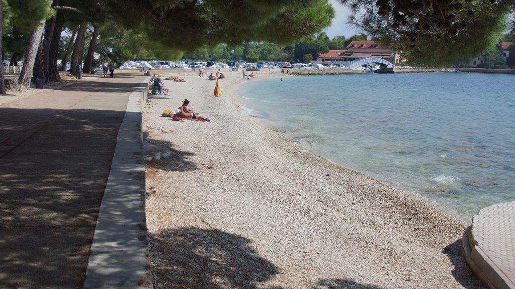 Fazana Kroatien Reisefuhrer Kroati De
