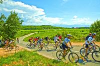 Radfahrergruppe in Pula