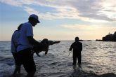 Meeresschildkröte Meer