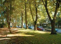 Park Huguesov Pula