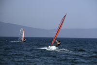 Windsurfing Pula