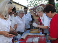 Kirschtage in Lovran