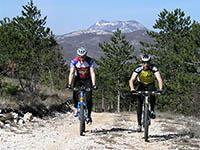 Radfahrer bei Opatija