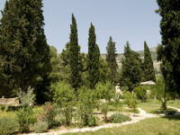 Kastela - Biblischer Garten