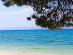 Sutivan Strand Bäume