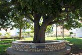 Insel Olib Park