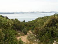 Insel Pasman - Wandern