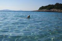 Insel Silba - Strand und Meer
