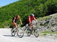 Insel Ugljan - Radfahren
