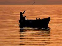 Jezera - Angeln, Fischen