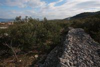 Sali - Olivenhain