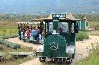 Erkunden Sie die Umgebung von Cavtat gemütlich bei einer Bahnfahrt
