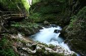 Fluss Radovna - Vintgar Klamm