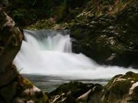 Vintgar Klamm - Natur