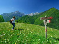 Wandern - Logar Tal