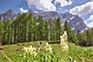 Vrsic Pass, Wandern