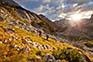 Wandergruppe Triglav Nationalpark