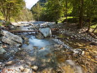 Soca Tal - Fluss Koritnica