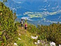 Wandern Bohinj