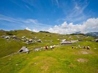 Velika Planina - Wandertour